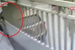 Clip: Nữ tài xế húc đổ cổng, tông nam bảo vệ chết não thương tâm