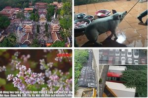 Tin tức Hà Nội 24h: Tận thấy bãi gửi xe chui ngay gầm cầu Thăng Long