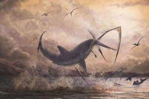 Phát hiện hóa thạch tuyệt đẹp của cá mập bay thời tiền sử