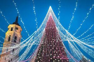 Clip: Chiêm ngưỡng 8 cây thông Noel đẹp và hoành tráng nhất thế giới