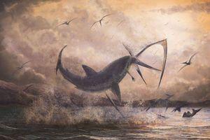 Phát hiện sốc về 'cá mập bay' thời tiền sử