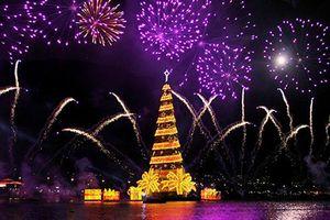 Không thể bỏ lỡ cơ hội chiêm ngưỡng 10 cây thông Giáng sinh đang giữ kỷ lục thế giới