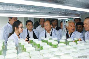 Thủ tướng thăm Lam Kinh và các cơ sở động lực kinh tế của Thanh Hóa