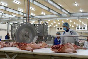 Khám phá bên trong nhà máy giết mổ lợn 1.000 tỷ, lớn nhất Việt Nam