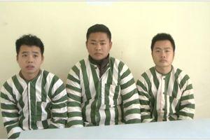 Quảng Ninh: Nhóm đối tượng trộm cắp và tiêu thụ xe gian sa lưới