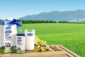 F&N Dairy 'nhẫn nại' đăng ký mua 17,4 triệu cổ phiếu Vinamilk