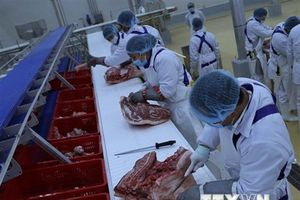 Khánh thành tổ hợp chế biến theo công nghệ thịt mát đầu tiên