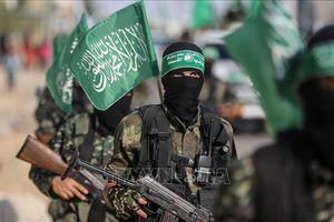 Phong trào Hamas phản đối kế hoạch giải tán Hội đồng Lập pháp Palestine