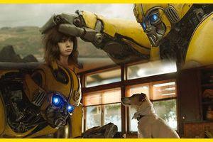 Bumblebee - Robot 'ong vàng' đáng yêu nhất hồi sinh thương hiệu Transformer