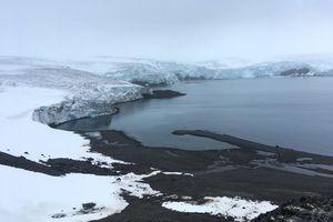 Băng tan khiến mỗi giây lại có tới 14.000 tấn nước Bắc Cực đổ ra biển