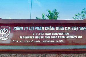 Phạt tù 11 nhân viên Công ty chăn nuôi CP Việt Nam
