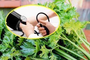 Những loại rau ăn hằng ngày giúp hạ huyết áp hiệu quả