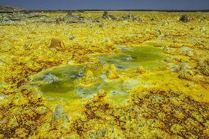 Chiêm ngưỡng vẻ đẹp kỳ lạ mang tên cánh đồng vàng Dallol