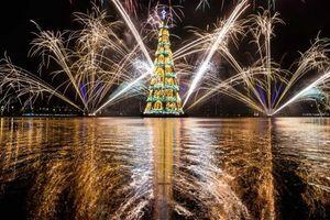 Chiêm ngưỡng những cây thông độc đáo bậc nhất thế giới dịp Giáng sinh