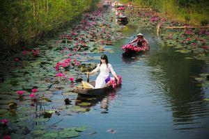 Lạ, quen suối hoa nơi đất Phật