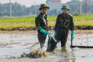 Tình hình xử lý sau hơn 1 tuần xảy ra sự cố tràn dầu ở Thanh Hóa