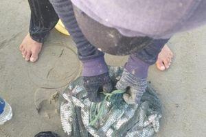 Ngón nghề cực độc: 10 phút kiếm '3 chai' của ngư dân Đà Nẵng