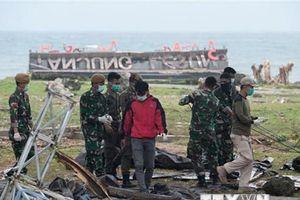 Dùng máy bay không người lái, chó nghiệp vụ tìm nạn nhân sóng thần