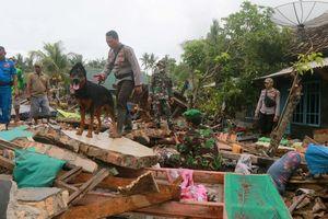 Sóng thần ở Indonesia: Số người chết tăng cao, lực lượng cứu hộ ráo riết tìm kiếm người sống sót