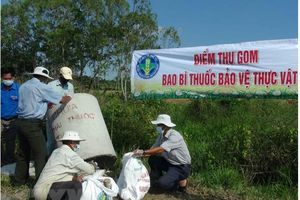 Thừa Thiên – Huế: Ban hành Quy chế thu gom, vận chuyển và xử lý bao gói thuốc bảo vệ thực vật sau sử dụng