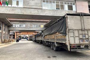 Hàng Việt cần tăng chất lượng để tăng cơ hội xuất khẩu chính ngạch