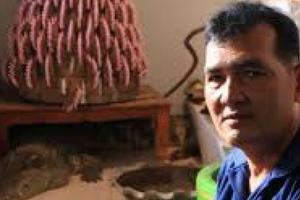 Thái Lan: Người đàn ông sống chung nhà với cá sấu suốt 20 năm