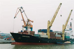 Vì đâu cảng biển Việt Nam duy trì tăng trưởng mạnh?