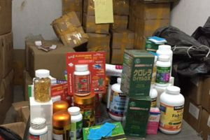 Nhiều cơ sở vi phạm an toàn vệ sinh thực phẩm, hành nghề Y, Dược