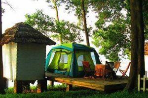 Những điểm vui chơi dịp Tết dương lịch 'không tốn tiền' gần Hà Nội