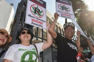 Thái Lan hợp pháp hóa cần sa y tế