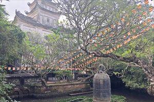 Thánh đường trong chùa Cổ Lễ