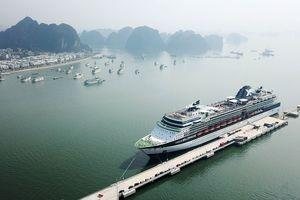 'Mục sở thị' Cảng tàu khách du lịch quốc tế đầu tiên của Việt Nam