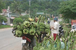 Quảng Trị: Tạo việc làm mới cho khoảng 11.000 lao động trong năm 2018