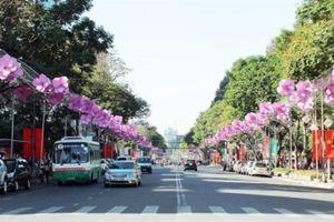 TP.HCM: Cấm xe lưu thông đường Lê Duẩn 4 ngày tổ chức lễ hội