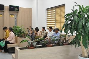 Hà Nội: Triển khai thực hiện cơ sở y tế 'Xanh-Sạch-Đẹp'