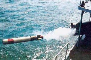 'Nội soi' sức mạnh ngư lôi nghi của Trung Quốc dạt vào bờ biển Phú Yên