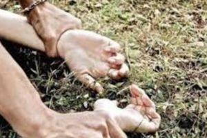 Bắt 2 thanh niên tấn công, hiếp dâm nữ sinh trong vườn điều