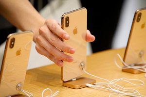 Foxconn có thể bắt đầu lắp ráp iPhone cao cấp tại Ấn Độ từ năm 2019