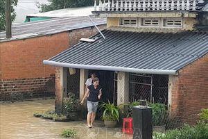 Phú Yên, Ninh Thuận sẵn sàng ứng phó với diễn biến mưa lũ phức tạp