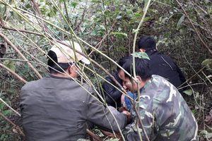 'Ông trùm' mang 50.000 viên ma túy nhảy vào bụi cây, bị trinh sát khiêng ra khỏi rừng