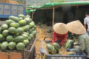 Nhiều giải pháp nâng cao giá trị xuất khẩu nông sản Việt