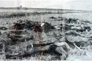Người đàn ông có hơn 200 người thân bị Pol Pot sát hại