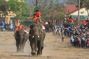 Buôn Đôn (Đắk Lắk): Sẵn sàng cho Hội voi 2019