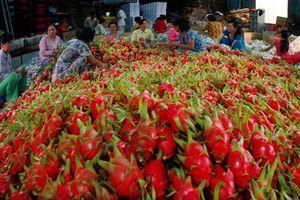 Khẳng định vị thế cường quốc xuất khẩu nông sản