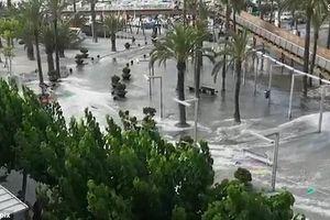 Những thảm họa thiên nhiên thế giới phải gánh chịu trong năm 2018