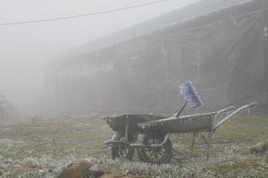 Chùm ảnh: Ngày thứ ba băng tuyết Mẫu Sơn – ngưng trệ mọi hoạt động