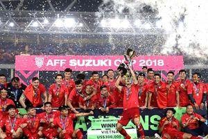 Năm 2019, thể thao Việt Nam sẽ thành công hơn nữa trên các đấu trường