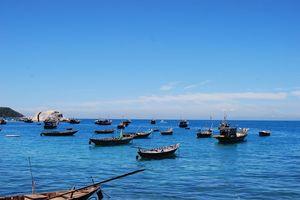 Những điều cần biết khi du lịch Cù Lao Chàm
