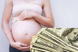 Triệt phá đường dây mang thai hộ xuyên quốc gia