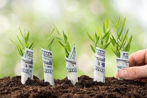Bạn đã biết cách tiết kiệm được nhiều tiền trong năm 2019?